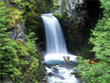 Free Cartoon Screensavers - Charming Waterfalls Screensaver