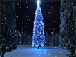 Free Christmas Screensavers - Holiday Tree Screensaver
