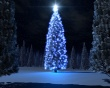 Christmas blue tree Wallpaper Preview
