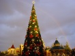 Disneyland tree - christmas wallpaper