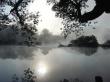 Morning lake - scenery wallpaper