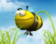 Big bee - insects wallpaper