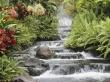 Vista waterfall - scenery wallpaper