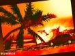 It is summer - summer wallpaper