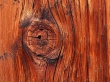 Vista wood node - scenery wallpaper