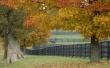 Autumn I want - scenery wallpaper