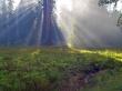 Ray Of Heaven II - scenery wallpaper