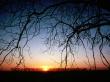 Winter Sunset - winter wallpaper