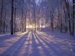 Winter Sunset II - winter wallpaper