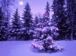 Lonely Tree - christmas wallpaper