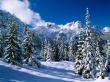 Quiet winter - scenery wallpaper