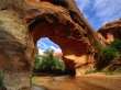 Coyote Natural Bridge - usa wallpaper