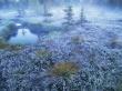 FrozenGrass - scenery wallpaper