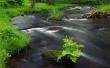 River Across - scenery wallpaper