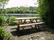 Ready for Picnic - scenery wallpaper