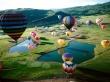Balloon Festival - usa wallpaper