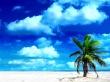 Holiday Beach - summer wallpaper