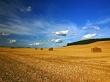 Beautiful Landscape - scenery wallpaper
