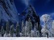 Dark Winter - scenery wallpaper