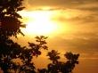 Golden Sky - scenery wallpaper