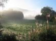 Morning Fog - scenery wallpaper