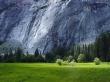 Grass Rock Contrast - scenery wallpaper