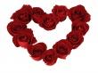 Heart Roses Ground - valentines wallpaper
