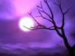 Purple sky - halloween wallpaper