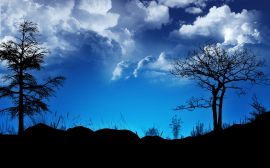 Blue contrast sky - scenery wallpaper