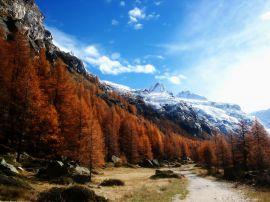 Gran Paradiso - scenery wallpaper