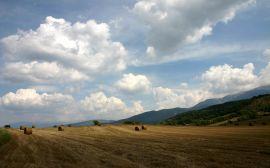 Haystacks on field - summer wallpaper