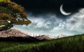 Moon over field - scenery wallpaper
