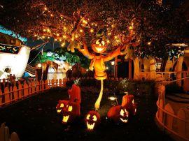 Halloween mascot - halloween wallpaper