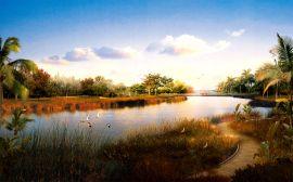 Wildlife lake - china wallpaper