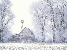Frosted Farmland - winter wallpaper