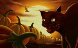 Angry Cat - halloween wallpaper