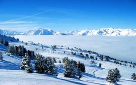 White Lands - winter wallpaper