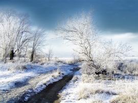 Winter in Terabithia - winter wallpaper