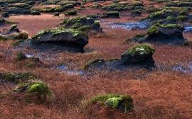 Wind Rocks - ireland wallpaper