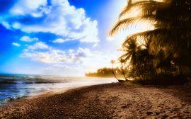 Sunbay - summer wallpaper