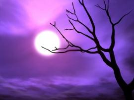 Purple sky - halloween wallpaper
