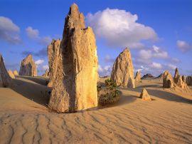 Pinnacles Desert - australia wallpaper
