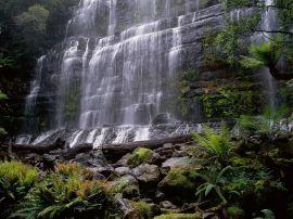 Russel Falls - australia wallpaper