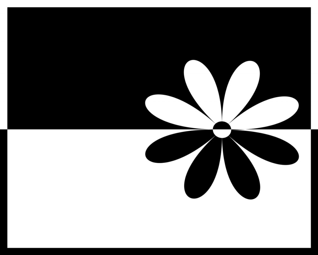 Black white flower - abstract wallpaper