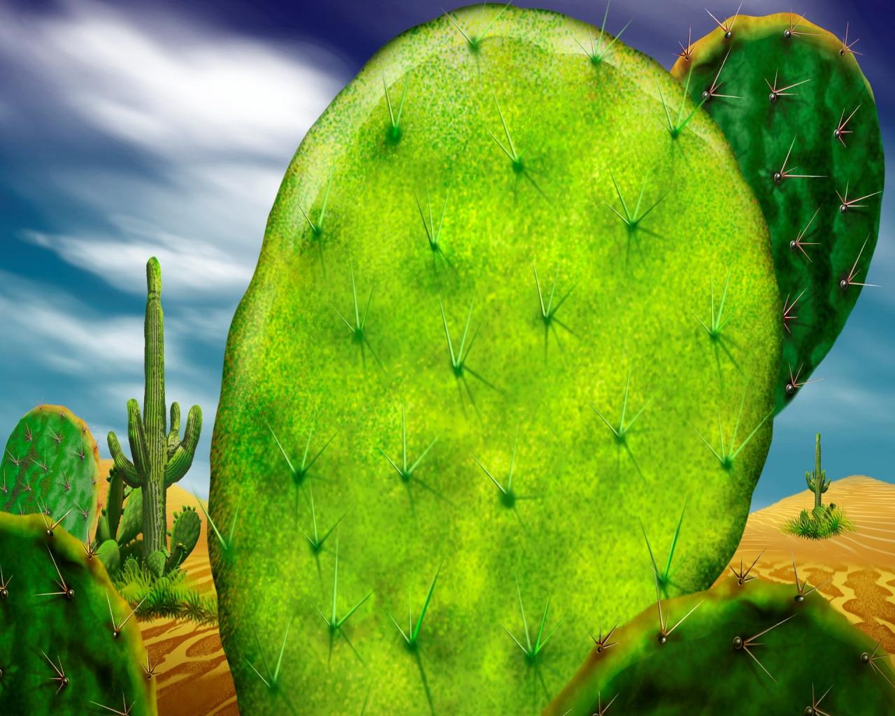 Cactus - landscape wallpaper
